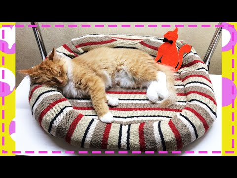 Лежанка для кошки своими руками мастер класс фото