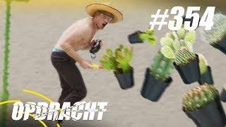 #354: Cactus Gooien [OPDRACHT]