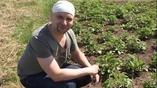 Немец живёт в чувашском селе