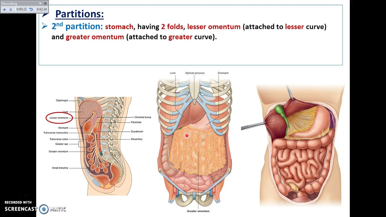 dubens organai su hipertenzija)