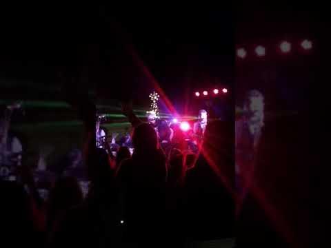 HERMOSA TREE LIGHTING 2017