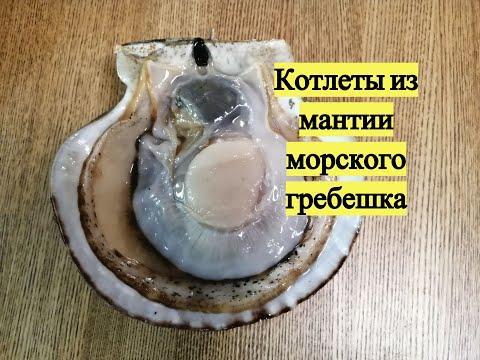 Котлеты из мантии морского гребешка