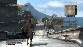 Dragons Dogma online (Part 1)