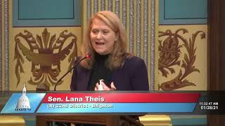 Sen. Theis speaks to the Senate on bipartisanship
