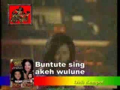 Didi & Inul - Cucak Rowo