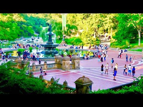 Central Park NYC Walking Tour | Travel Vlog