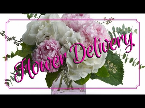 Best Florist in Houston | Flower Delivery 77058, 77059, 77062