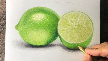 Speed drawing of a Lime with prismacolor pencils