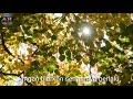 Hadad Alwi-Damai Bersamamu (video Renungan)