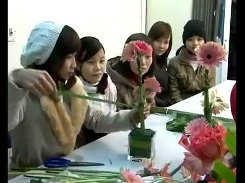 video Hoc Cam Hoa - Nu Cong Thanh Mai  8-1-2012
