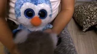 Фильм про пингвинов !!! Как я ухаживаю за ними!