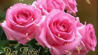 Прикольное видео поздравление с Днем 8 МАРТА - Международным Женским Днем. Красивая видео открытка