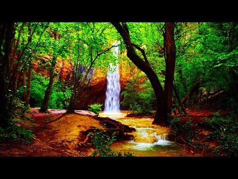Meditationsmusik  Zen - Flöte, Tibetanische Klangschalen und Naturgeräusche - Einschlafmusik