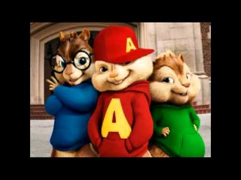 CHIPMUNKS takata