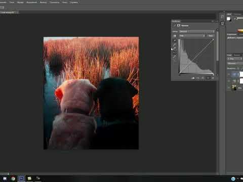 Видеоурок «Уровни и цветокоррекция в Adobe Photoshop»