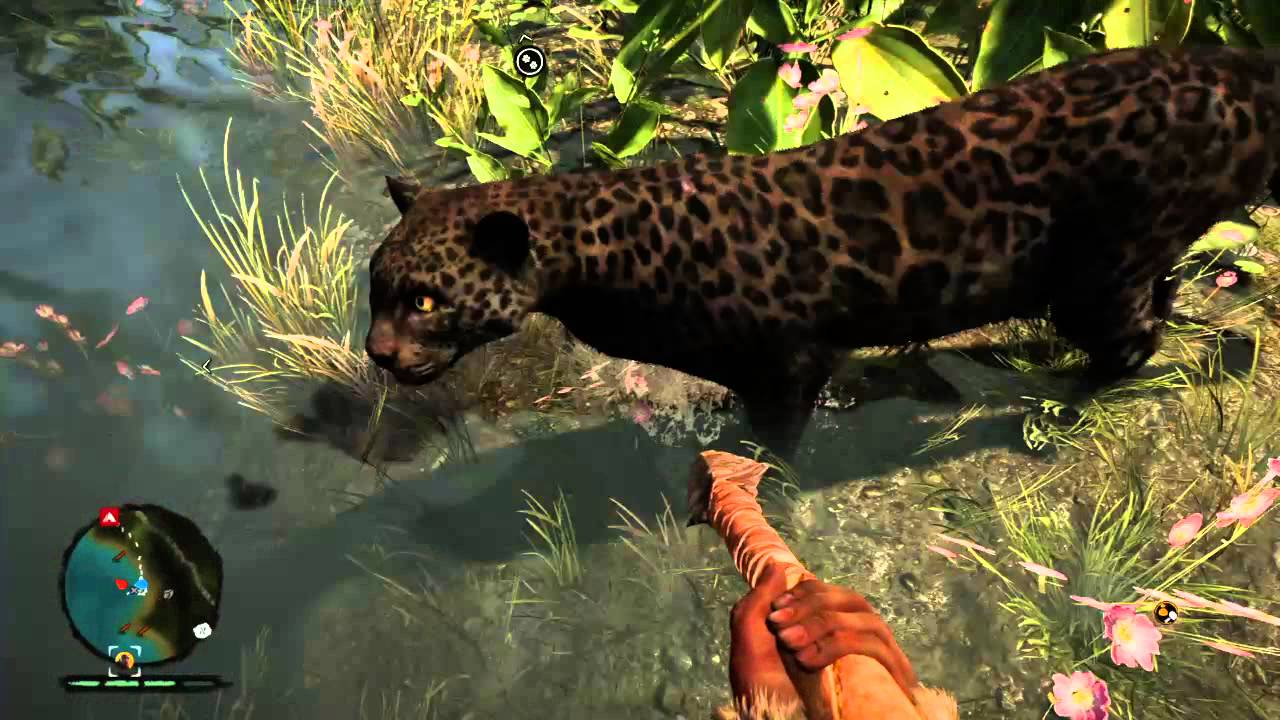 far cry primal how to get bait
