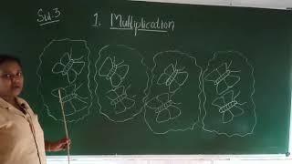 RPEES JUNIOR SCHOOL ONLINE CLASS STD 3 JYOTHIZ TEACHER MATHS 18/09/2020