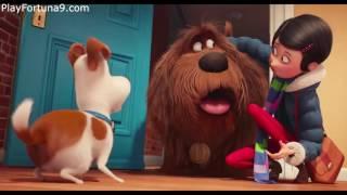 Тайная жизнь домашних животных Русский Трейлер 2016 HD