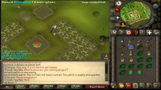 RuneScape 2007 - Best 10HP 99 Farming Guide w/ Tips & Tricks