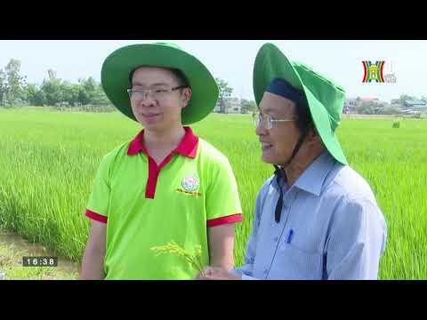 Phát triển nông nghiệp nông thôn, đổi mới sản xuất, gia tăng giá trị_[TRUYỀN HÌNH HÀ NỘI]