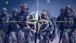 Украина-НАТО: цель 2020 | Украинские реформы