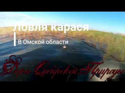 видео: Ловля карася на поплавок. Рыбалка на карася в Омске. Мастырка из манки.