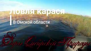 Ловля карася на поплавок. Рыбалка на карася в Омске. Мастырка из манки.
