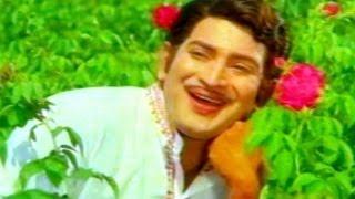 Gajula Kishtayya Songs - Navvulu Ruvve - Krishna, Zarina Wahab - HD