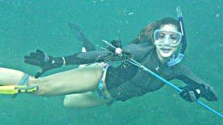 nicole freediving hollywood beach dania eurojacks spearfish lion fish turtle lobster shark hd