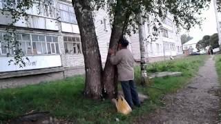 видео Как общаться с деревьями?