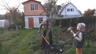 Построить дом, посадить дерево и вырастить сына