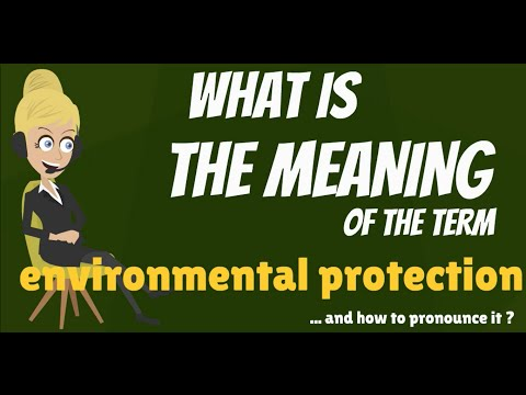 What is ENVIRONMENTAL PROTECTION? What does ENVIRONMENTAL PROTECTION mean?