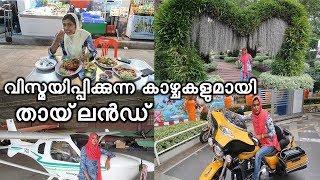 Amazing Thailand Vlog | വിസ്മയിപ്പിക്കുന്ന കാഴ്ചകളുടെ വസന്തമൊരുക്കി തായ്ലൻഡ്