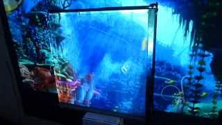 TEST DEMONSTRATION FOR 3D PROJECTOR SCREEN WITHOUT GLASSES