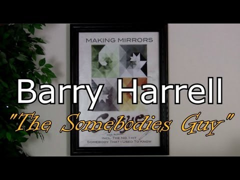 """Gotye """"The Wall-Nuts"""" Interview with Barry """"The Somebodies Guy"""""""