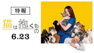 『猫は抱くもの』特報
