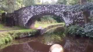 Brecon & Monmouthshire Canal - Owl