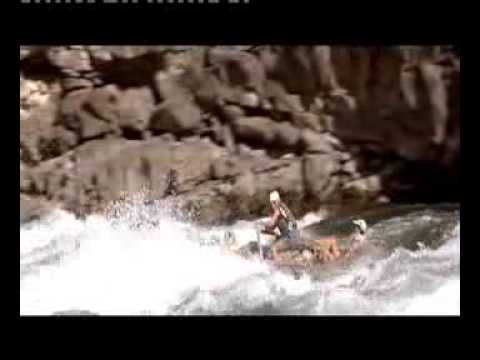 The River Wild - Cinema (1994)