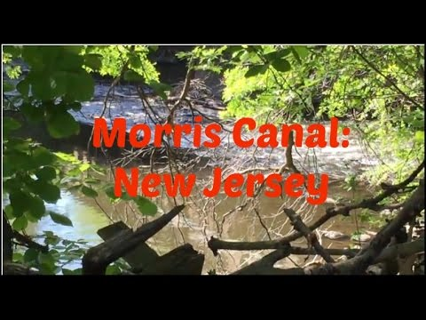 Morris Canal - New Jersey: View from the Backyard!