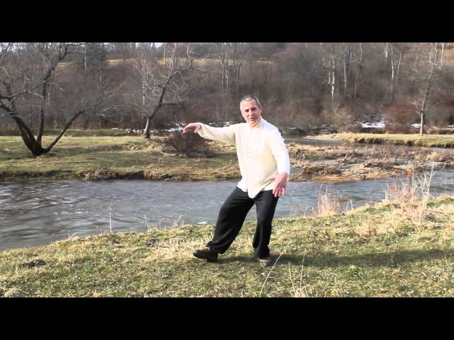 Tai chi whole body movement