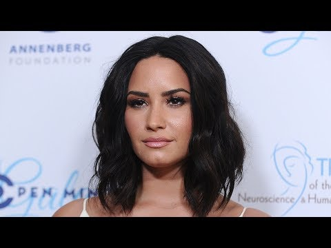 Demi Lovato CLAPS BACK At Fan Who Details HORRIBLE Meet & Greet Experience