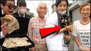知らない家族に1000万円で愛犬を売って貰えるか兄妹で聞いてみた。24時間詐欺師