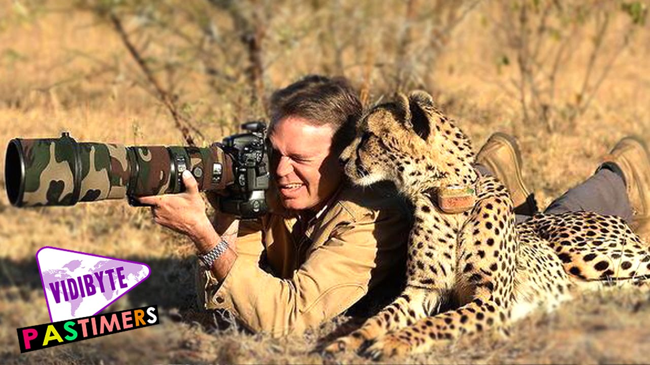10 Professional Wildlife Photographers In World - YouTube