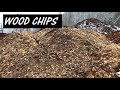 THE TRUTH ABOUT WOOD CHIPS FOR BACK TO EDEN GARDEN