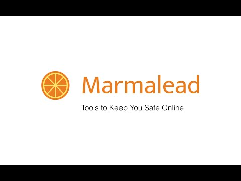 Browser Security Tools for Personal and Professional Use