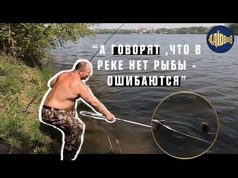 Рыбалка на Москва-реке.  Улов разных видов рыб