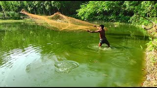 Net Fishing | Catching Big Fish With Cast Net | Net Fishing in the village (Part-325)