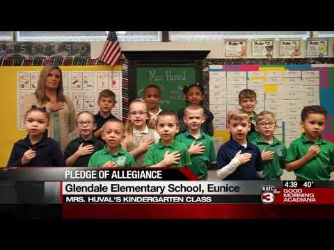 Today's Pledge of Allegiance 2/21/2020