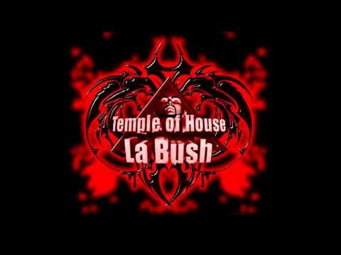 la bush temple of house - Cybertraxx - Musical Box (Remix).