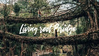 ENDLICH SIND WIR DA! - Double Decker Root Bridge & Seven Sister Wasserfall l Cherrapunjee, Indien